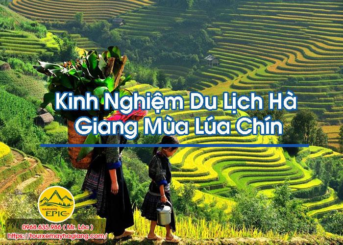 Kinh Nghiem Du Lich Ha Giang Mua Lua Chin