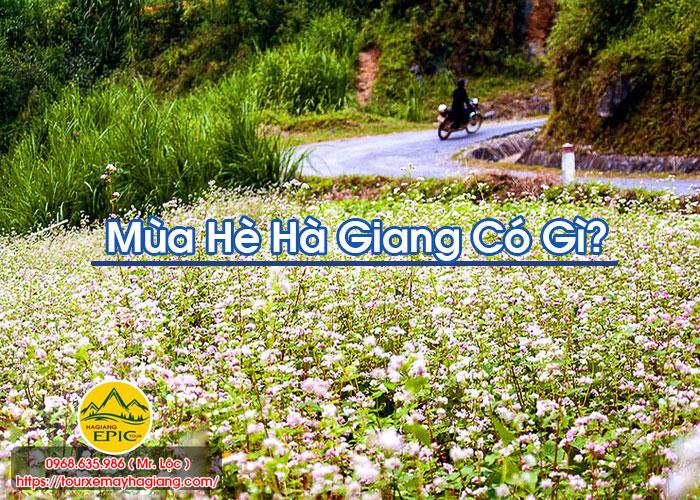 Mua He Ha Giang Co Gi